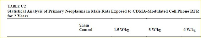 CDMA male rats final overall tumor rates header