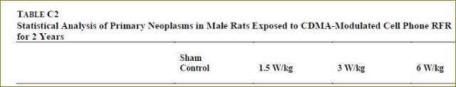 CDMA male rats final overall tumor rates header
