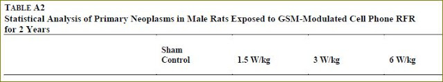 GSM male rats final overall tumor rates header